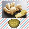 Picture of Ginger Paste(Premium Quality) 8oz
