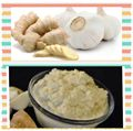 Picture of Ginger&Garlic Paste(Premium Quality) 8oz
